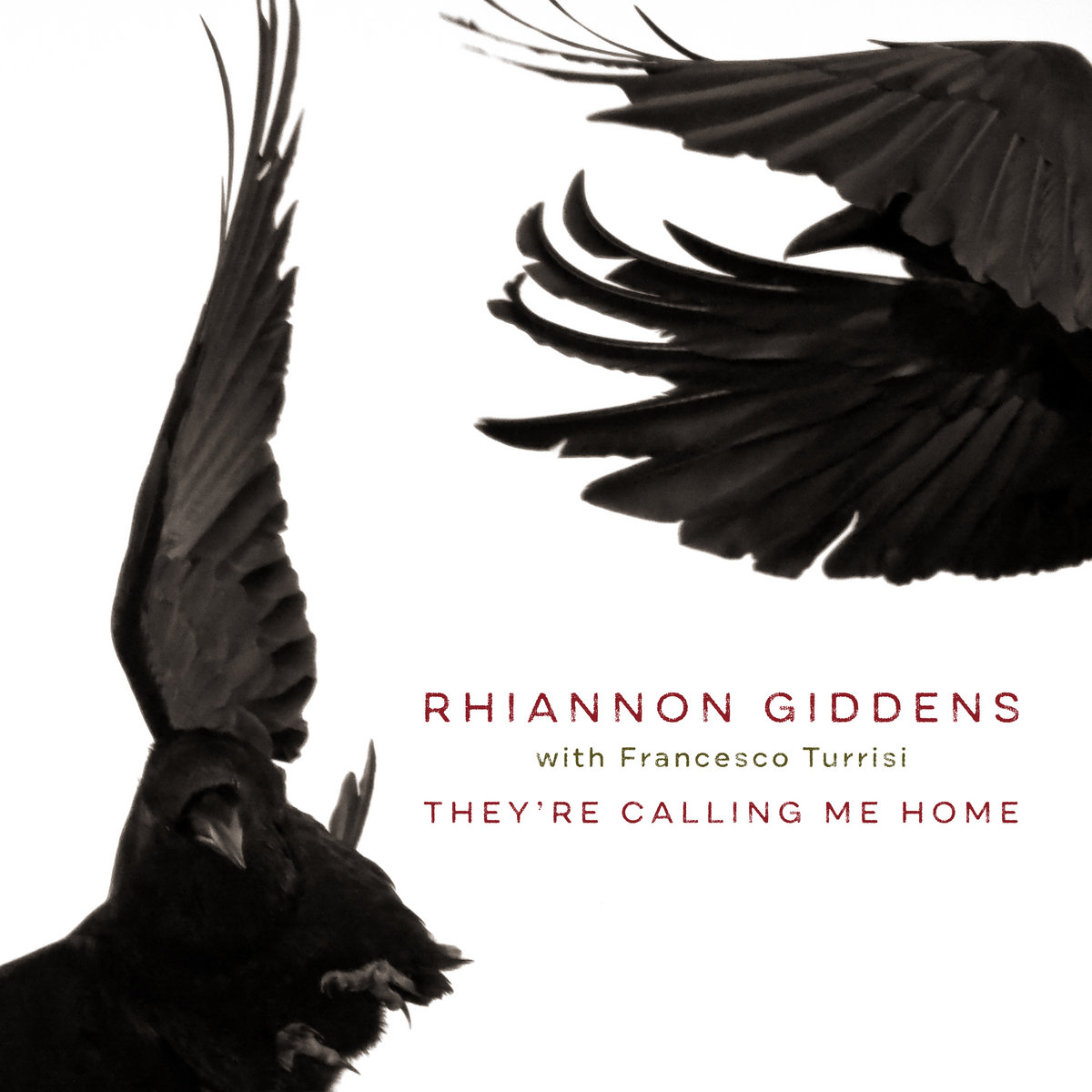 Rhiannon Giddens with Francesco Turrisi - They're Calling Me Home 1